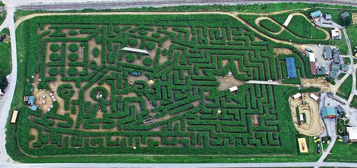 10 Real Difficult Labyrinths for awakened minds 3