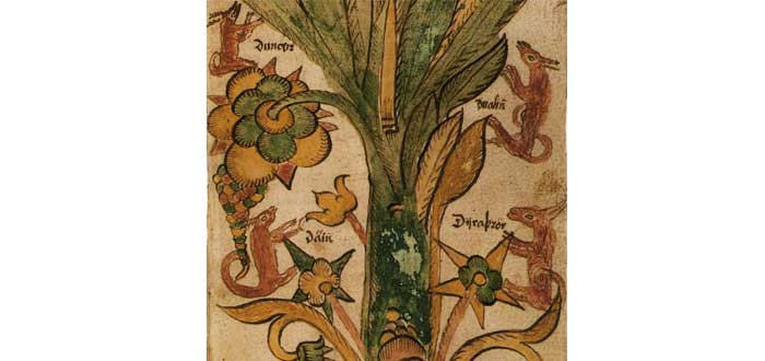 Tree Yggdrasil 3