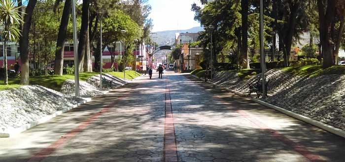 Plans in Mérida 4